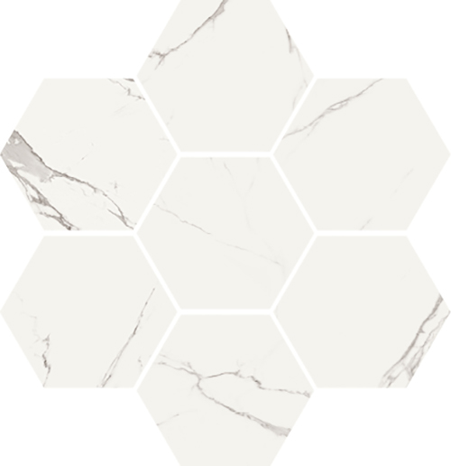 Time Worn Statuario Hexagon Mosaic